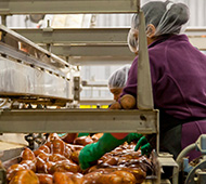 Maestría en Calidad, Seguridad Alimentaria, Dietética y Nutrición